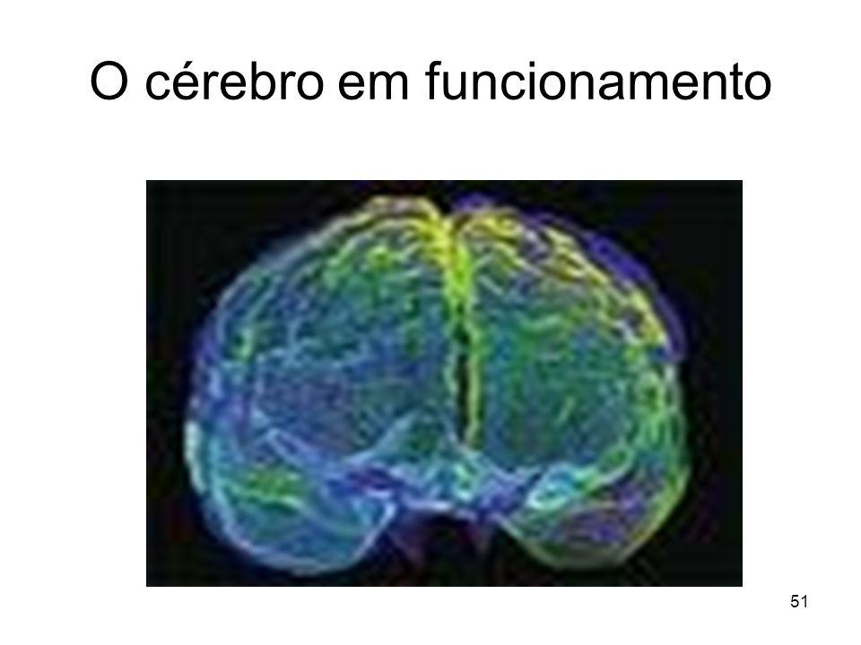 50 Córtex cerebral