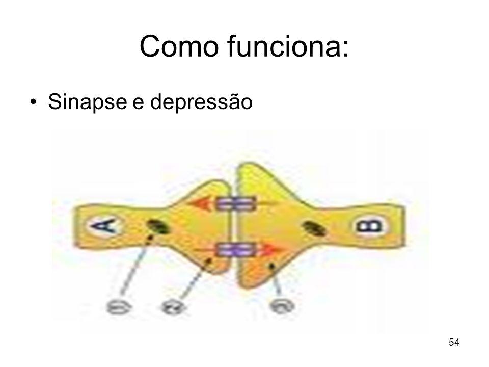 53 Depressão Os neurotransmissores –Noradrenalina Energia e interesse –Dopamina Iniciativa –Serotonina Bem-estar