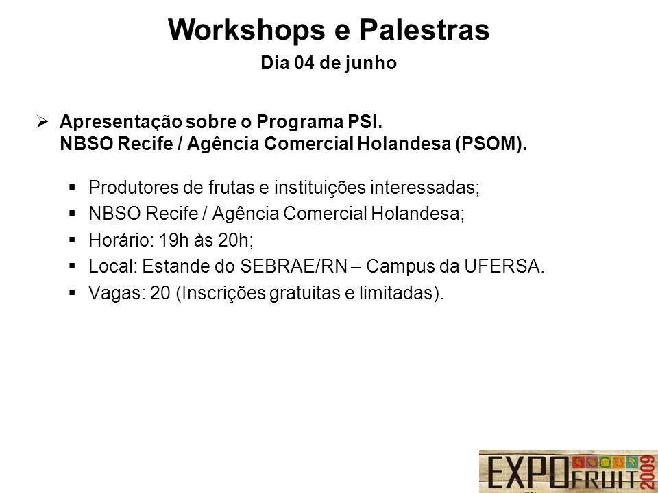 Apresentação sobre o Programa PSI. NBSO Recife / Agência Comercial Holandesa (PSOM). Produtores de frutas e instituições interessadas; NBSO Recife / A