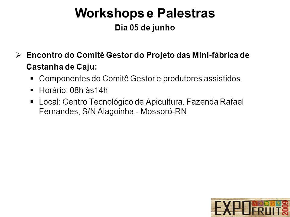 Encontro do Comitê Gestor do Projeto das Mini-fábrica de Castanha de Caju: Componentes do Comitê Gestor e produtores assistidos. Horário: 08h às14h Lo