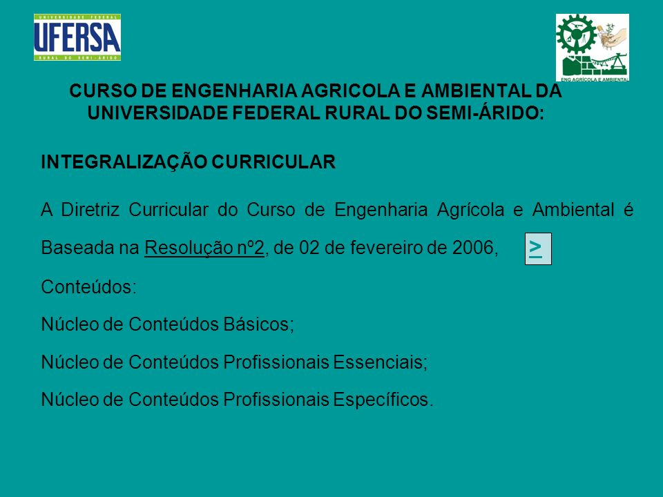 CURSO DE ENGENHARIA AGRICOLA E AMBIENTAL DA UNIVERSIDADE FEDERAL RURAL DO SEMI-ÁRIDO: INTEGRALIZAÇÃO CURRICULAR A Diretriz Curricular do Curso de Enge