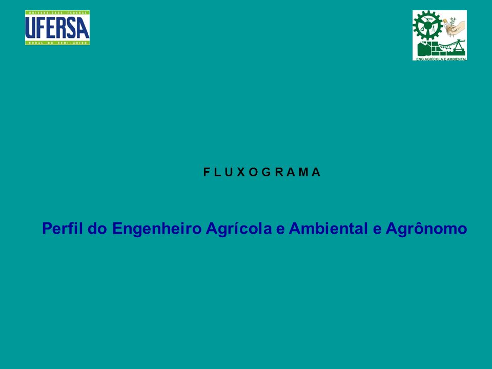 F L U X O G R A M A Perfil do Engenheiro Agrícola e Ambiental e Agrônomo