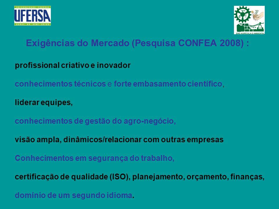 Exigências do Mercado (Pesquisa CONFEA 2008) : profissional criativo e inovador conhecimentos técnicos e forte embasamento científico, liderar equipes