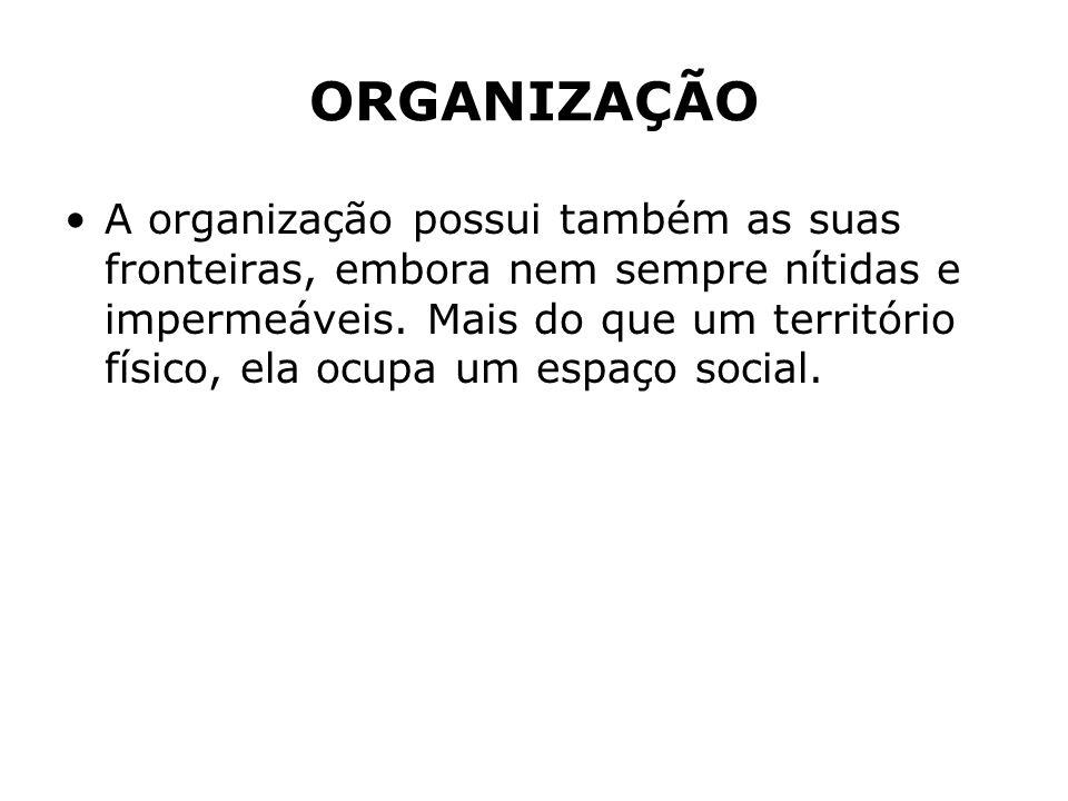 ORGANIZAÇÃO A organização possui também as suas fronteiras, embora nem sempre nítidas e impermeáveis. Mais do que um território físico, ela ocupa um e