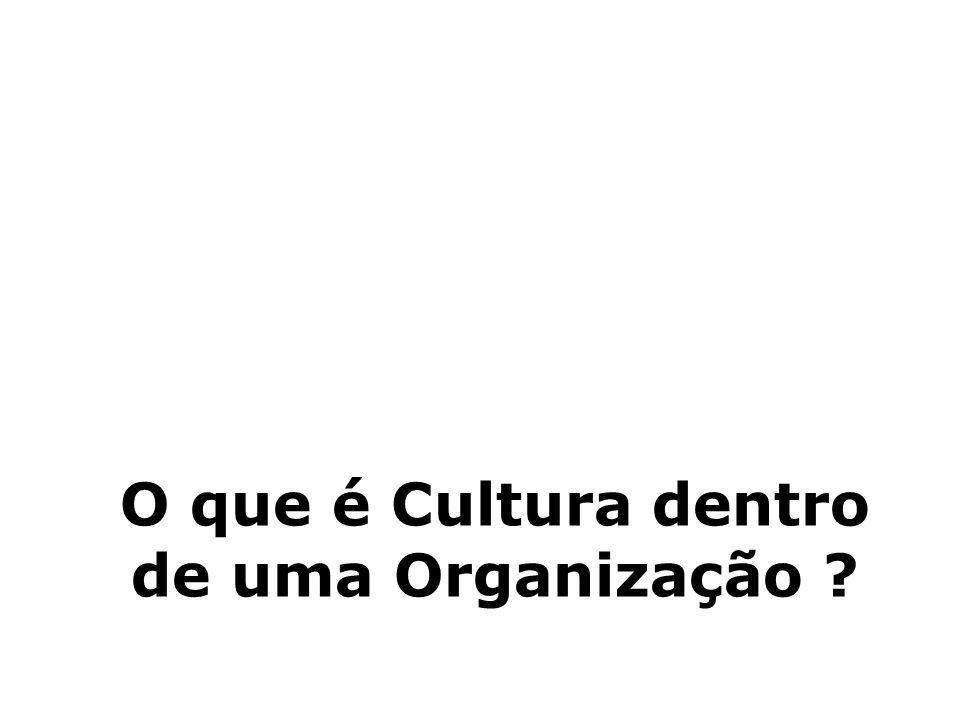 O que é Cultura dentro de uma Organização ?