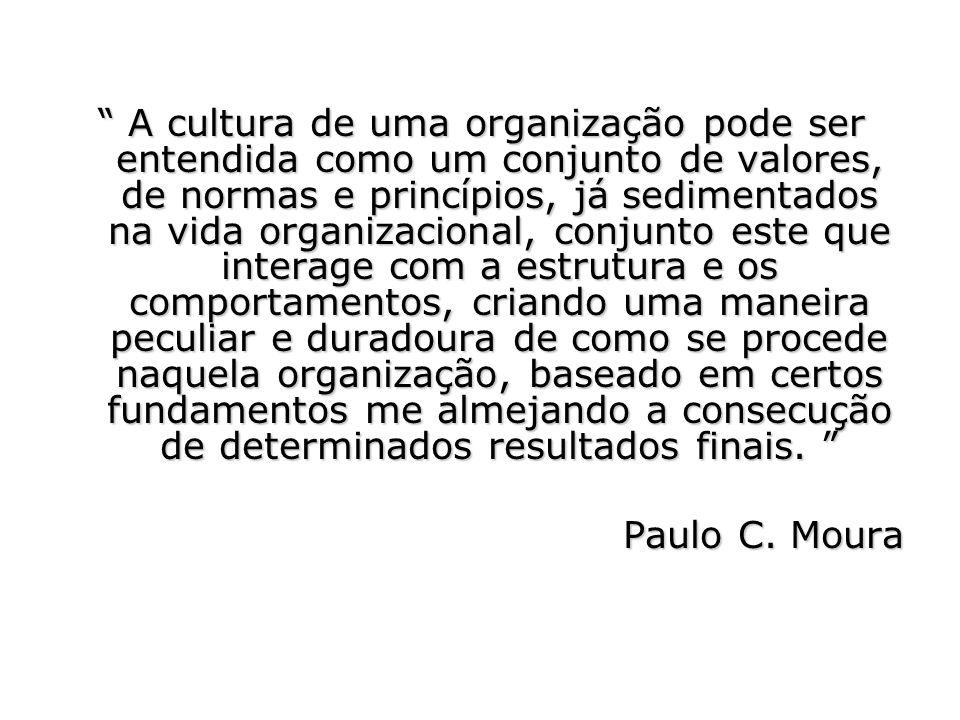 A cultura de uma organização pode ser entendida como um conjunto de valores, de normas e princípios, já sedimentados na vida organizacional, conjunto