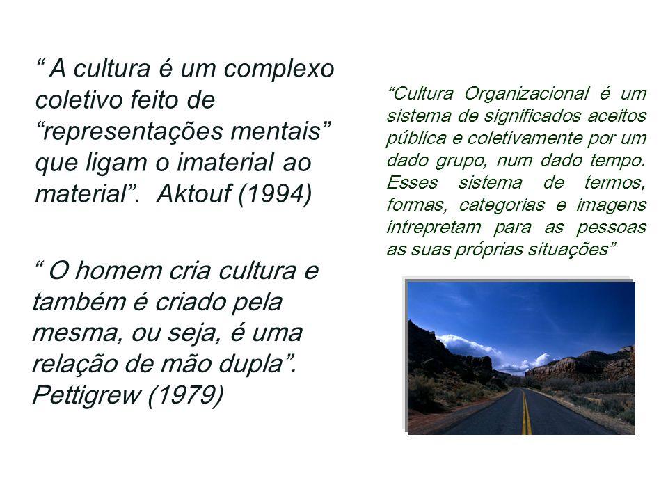 A cultura é um complexo coletivo feito de representações mentais que ligam o imaterial ao material. Aktouf (1994) O homem cria cultura e também é cria
