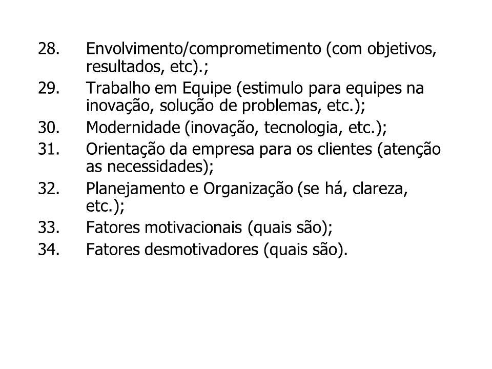 28.Envolvimento/comprometimento (com objetivos, resultados, etc).; 29.Trabalho em Equipe (estimulo para equipes na inovação, solução de problemas, etc