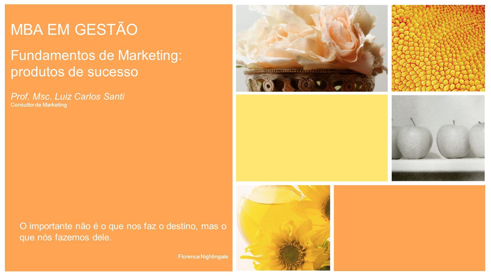 MBA EM GESTÃO Fundamentos de Marketing: produtos de sucesso Prof. Msc. Luiz Carlos Santi Consultor de Marketing O importante não é o que nos faz o des