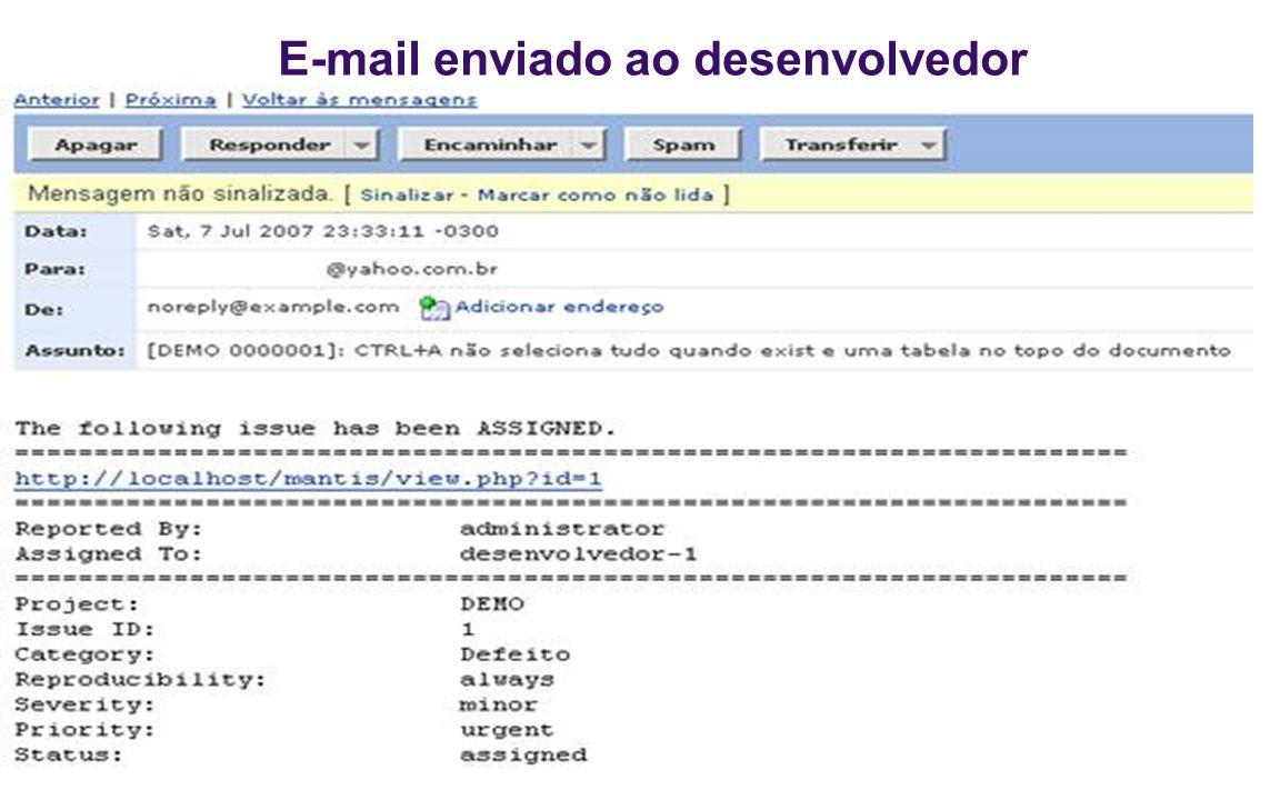E-mail enviado ao desenvolvedor