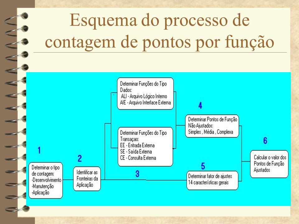 Contagem de ponto por função (PF) Contagem de PF de Projetos de Desenvolvimento - PF associados com a instalação inicial de um software novo Contagem de PF de Projetos de Manutenção - PF associados com a melhoria de um software já existente (inclui funcionalidade que é adicionada, modificada ou excluída) Contagem de PF de Aplicações - PF associados com uma aplicação instalada - Funcionalidade da aplicação no ponto de vista do usuário Determinar Tipo de Contagem