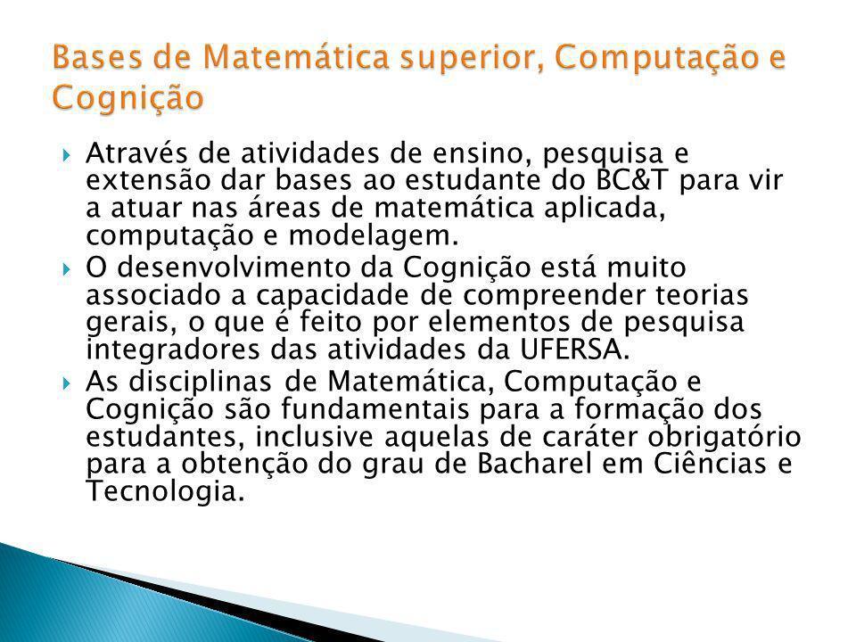 Através de atividades de ensino, pesquisa e extensão dar bases ao estudante do BC&T para vir a atuar nas áreas de matemática aplicada, computação e mo