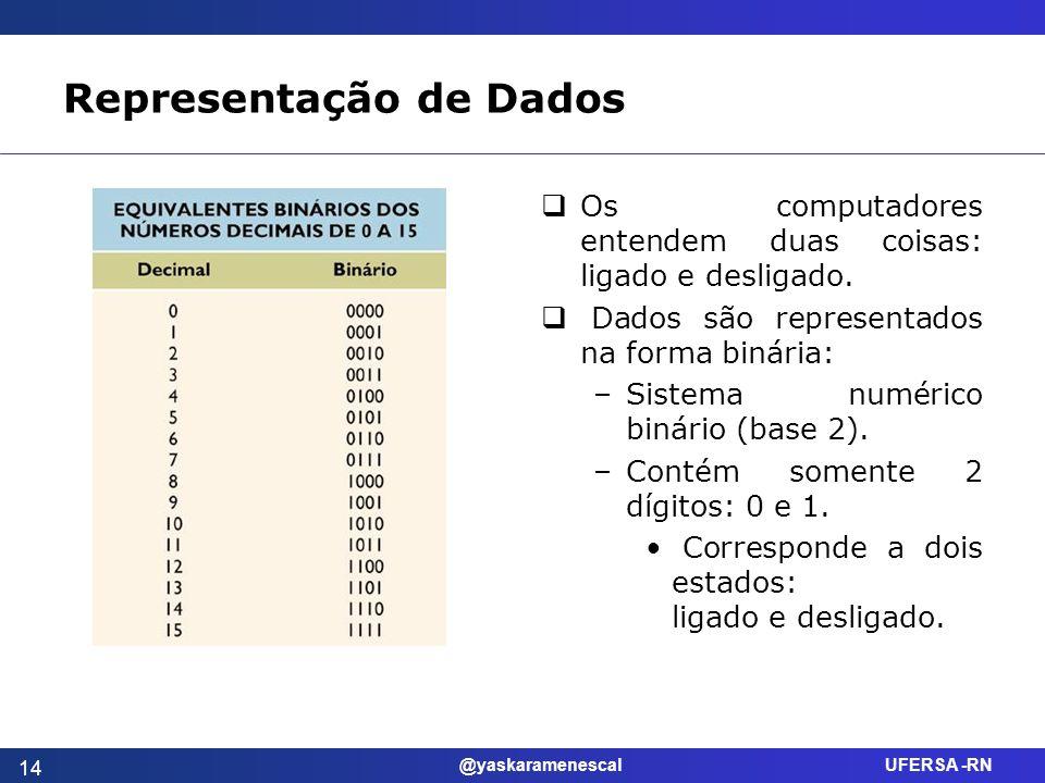 @yaskaramenescal UFERSA -RN Representação de Dados Os computadores entendem duas coisas: ligado e desligado. Dados são representados na forma binária: