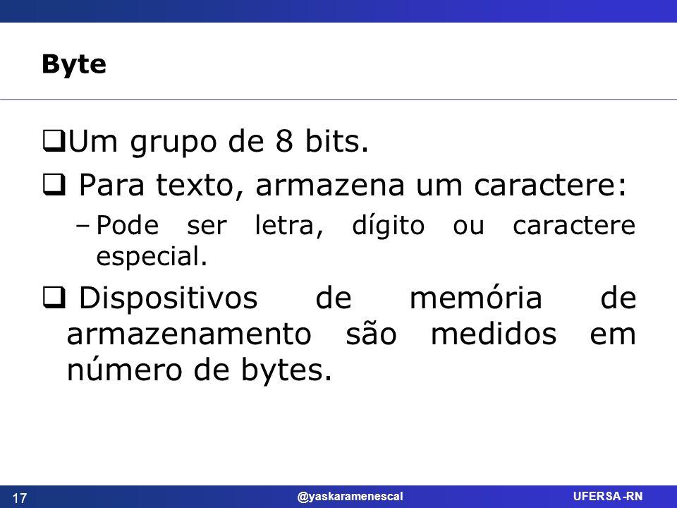 @yaskaramenescal UFERSA -RN Byte Um grupo de 8 bits. Para texto, armazena um caractere: –Pode ser letra, dígito ou caractere especial. Dispositivos de