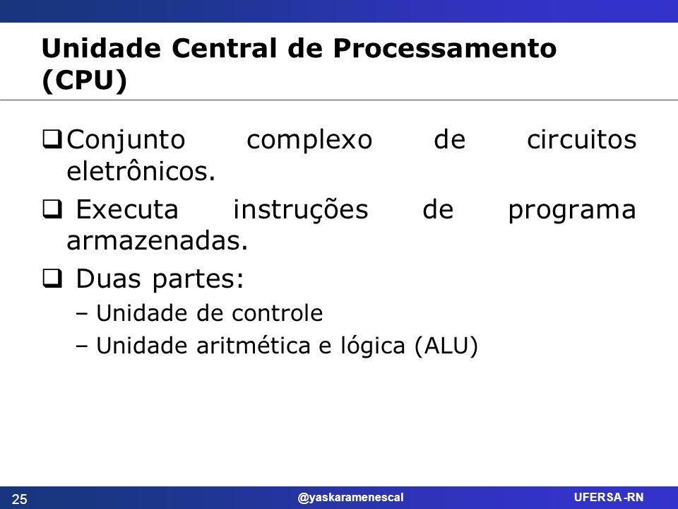 @yaskaramenescal UFERSA -RN Unidade Central de Processamento (CPU) Conjunto complexo de circuitos eletrônicos. Executa instruções de programa armazena