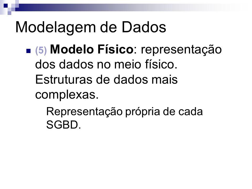 Modelagem de Dados (5) Modelo Físico: representação dos dados no meio físico. Estruturas de dados mais complexas. Representação própria de cada SGBD.