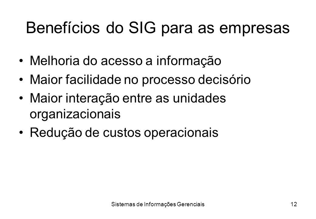 Sistemas de Informações Gerenciais11 Áreas funcionais na empresa Dois tipos: Áreas fim –Atividades e funções ligadas ao ciclo de produção ou colocação