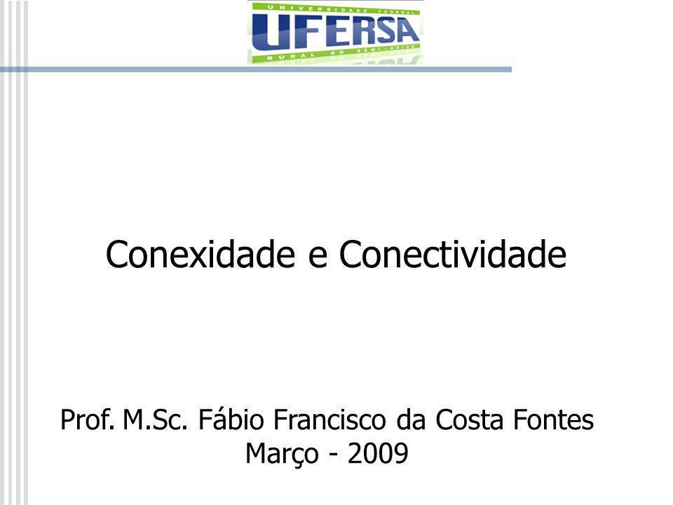 Conexidade e Conectividade Prof. M.Sc. Fábio Francisco da Costa Fontes Março - 2009