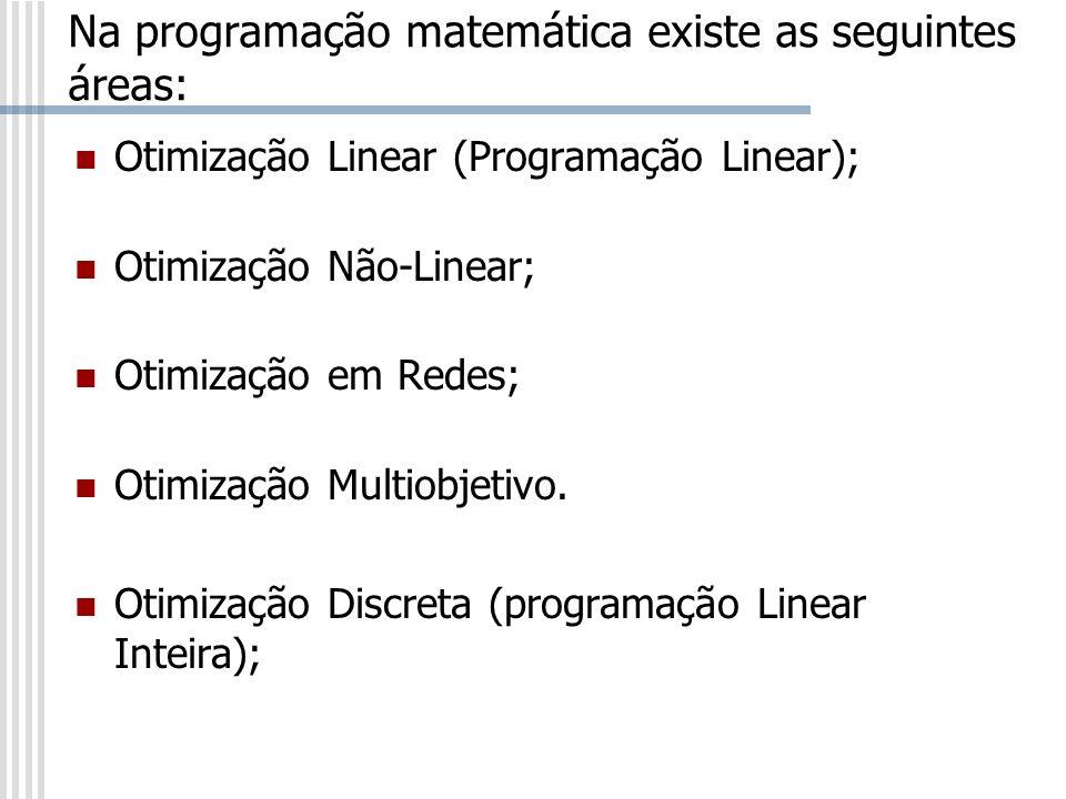 Na programação matemática existe as seguintes áreas: Otimização Linear (Programação Linear); Otimização Não-Linear; Otimização em Redes; Otimização Mu