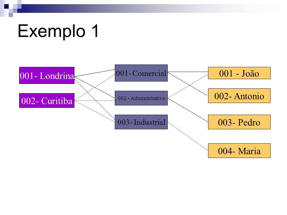 A Abordagem em Rede Em um BD estruturado como um modelo em rede há freqüentemente mais de um caminho para acessar um determinado elemento de dado. A p