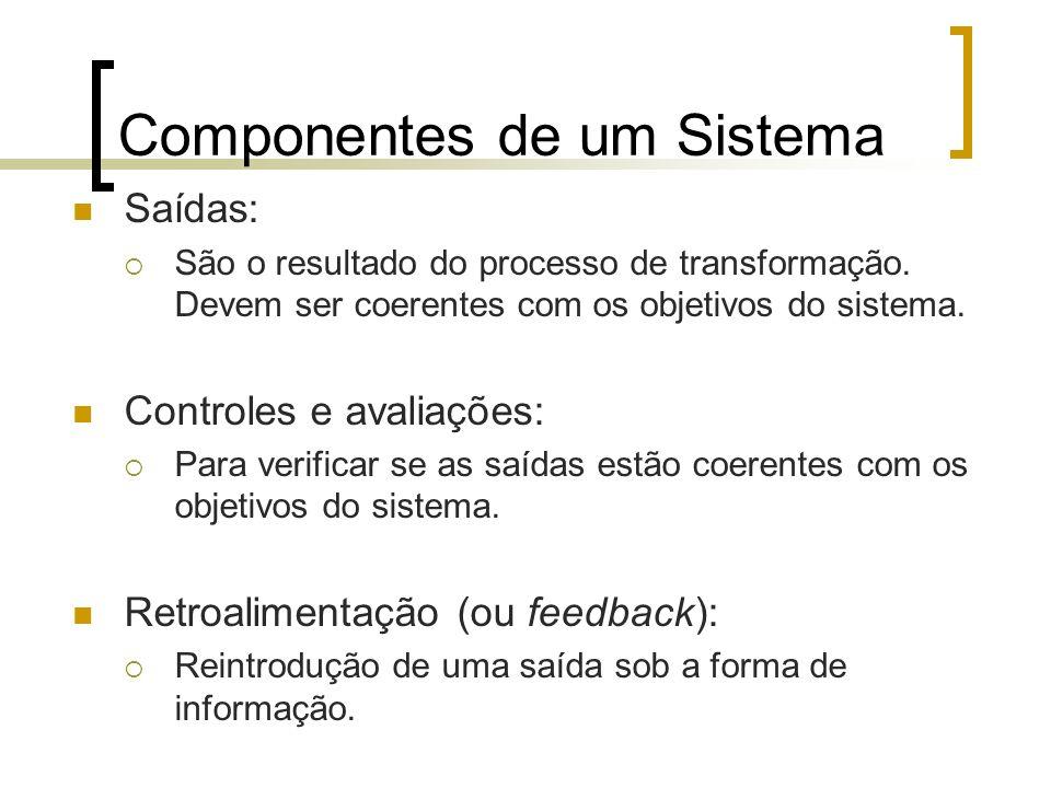 Componentes de um Sistema Saídas: São o resultado do processo de transformação. Devem ser coerentes com os objetivos do sistema. Controles e avaliaçõe