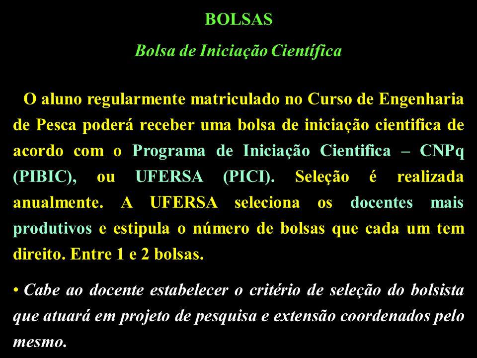 BOLSAS Bolsa de Iniciação Científica O aluno regularmente matriculado no Curso de Engenharia de Pesca poderá receber uma bolsa de iniciação cientifica de acordo com o Programa de Iniciação Cientifica – CNPq (PIBIC), ou UFERSA (PICI).