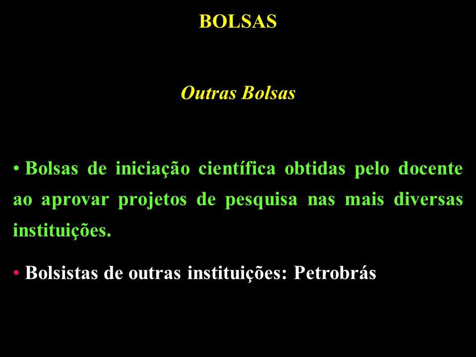 BOLSAS Outras Bolsas Bolsas de iniciação científica obtidas pelo docente ao aprovar projetos de pesquisa nas mais diversas instituições.