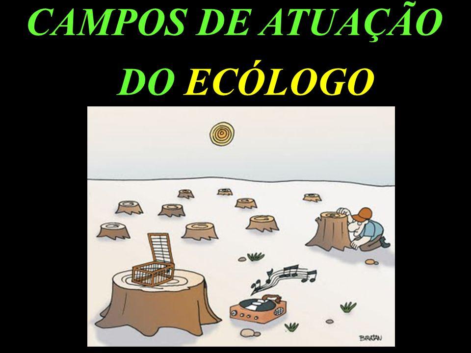 CAMPOS DE ATUAÇÃO DO ECÓLOGO