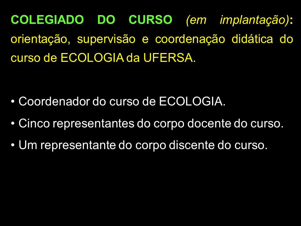 COLEGIADO DO CURSO (em implantação): orientação, supervisão e coordenação didática do curso de ECOLOGIA da UFERSA.