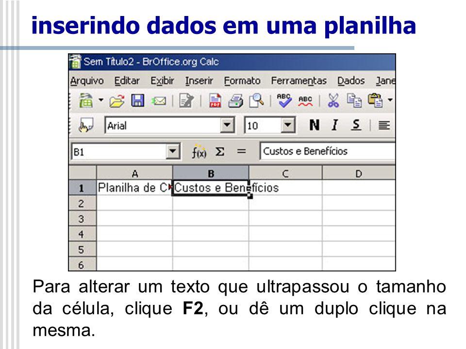 Para alterar um texto que ultrapassou o tamanho da célula, clique F2, ou dê um duplo clique na mesma. inserindo dados em uma planilha