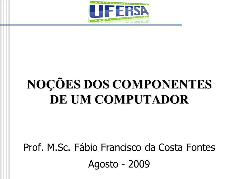NOÇÕES DOS COMPONENTES DE UM COMPUTADOR Prof. M.Sc. Fábio Francisco da Costa Fontes Agosto - 2009