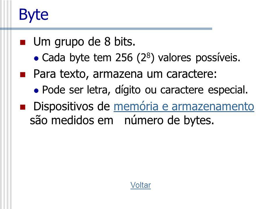 Byte Um grupo de 8 bits. Cada byte tem 256 (2 8 ) valores possíveis. Para texto, armazena um caractere: Pode ser letra, dígito ou caractere especial.