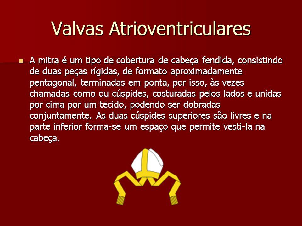 Valvas Atrioventriculares Valva Mitral: Valva Mitral: –O septo ventricular é sempre livre de inserções cordais.