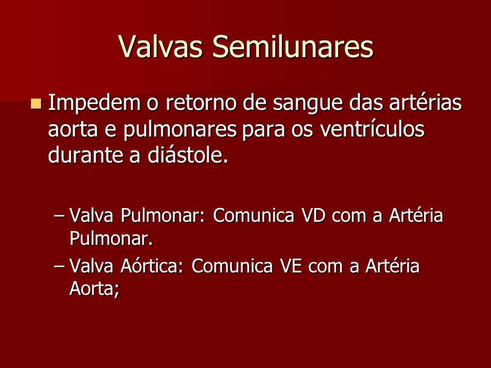 Valvas Semilunares Impedem o retorno de sangue das artérias aorta e pulmonares para os ventrículos durante a diástole. Impedem o retorno de sangue das