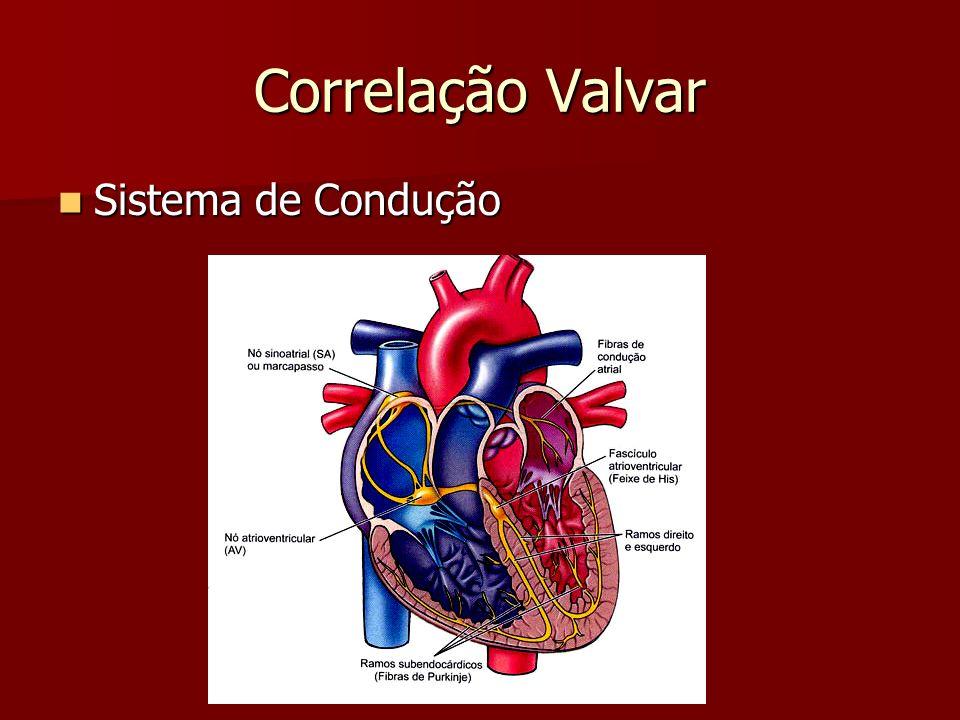 Desempenho Cardíaco Débito cardíaco = FC x Vol.Sistólico Débito cardíaco = FC x Vol.Sistólico Índice Cardíaco = DC / Superf.Corpórea Índice Cardíaco = DC / Superf.Corpórea Fração de Ejeção (normal 56%) Fração de Ejeção (normal 56%) Vol.Diastólico Final – Vol.