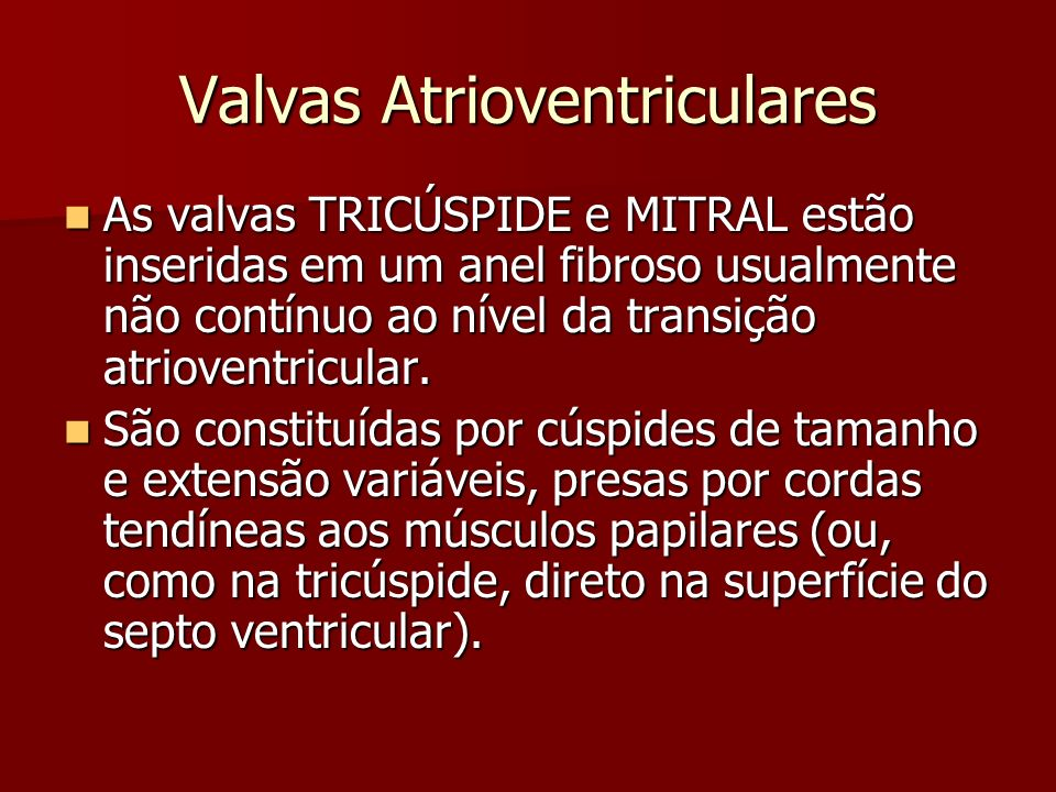 Valvas Atrioventriculares As cúspides são constituídas por tecido conjuntivo frouxo, com variável quantidade de colágeno, proteoglicanos e fibras elásticas.