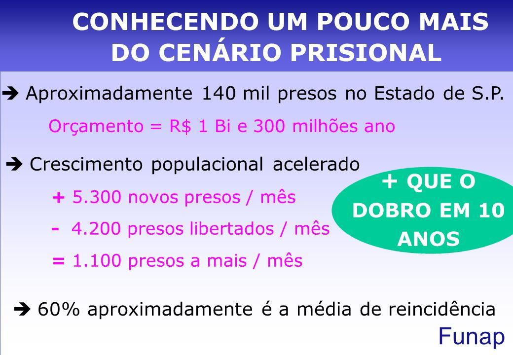 Funap Perfil: Homens, jovens, com filhos e semi-analfabetos 76,2% cometeram delitos leves NÃO OFERECEM RISCO A SOCIEDADE NÃO PRETENDEM SER REINCIDENTES PESSOAS COM POUCAS OPORTUNIDADES NA SOCIEDADE CONHECENDO UM POUCO MAIS DO CENÁRIO PRISIONAL
