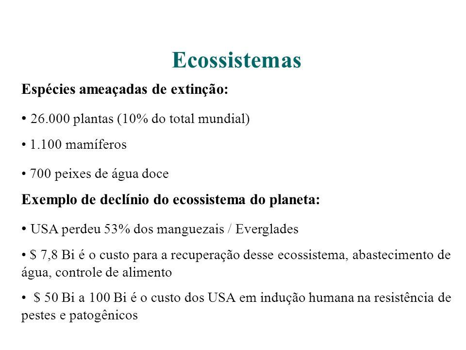 Ecossistemas Espécies ameaçadas de extinção: 26.000 plantas (10% do total mundial) 1.100 mamíferos 700 peixes de água doce Exemplo de declínio do ecossistema do planeta: USA perdeu 53% dos manguezais / Everglades $ 7,8 Bi é o custo para a recuperação desse ecossistema, abastecimento de água, controle de alimento $ 50 Bi a 100 Bi é o custo dos USA em indução humana na resistência de pestes e patogênicos