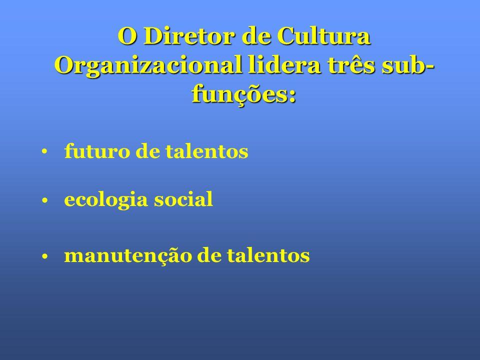 A sub-função Futuro de Talentos caminha junto com a estratégia da empresa: com a estratégia da empresa: Em que áreas de negócio a empresa estará daqui a 5 anos.