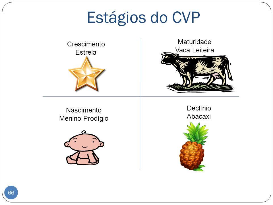 Estágios do CVP Nascimento Menino Prodígio Crescimento Estrela Maturidade Vaca Leiteira Declínio Abacaxi 66