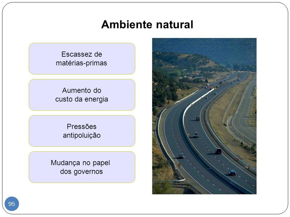 Ambiente natural Escassez de matérias-primas Aumento do custo da energia Pressões antipoluição Mudança no papel dos governos 95