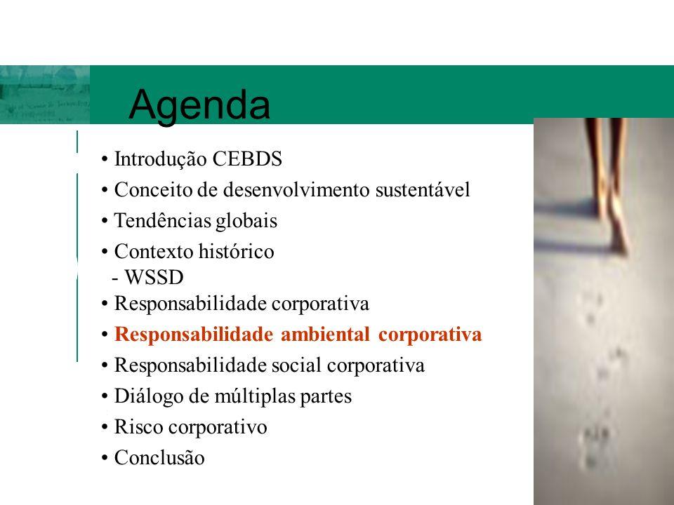 Agenda Introdução CEBDS Conceito de desenvolvimento sustentável Tendências globais Contexto histórico - WSSD Responsabilidade corporativa Responsabili