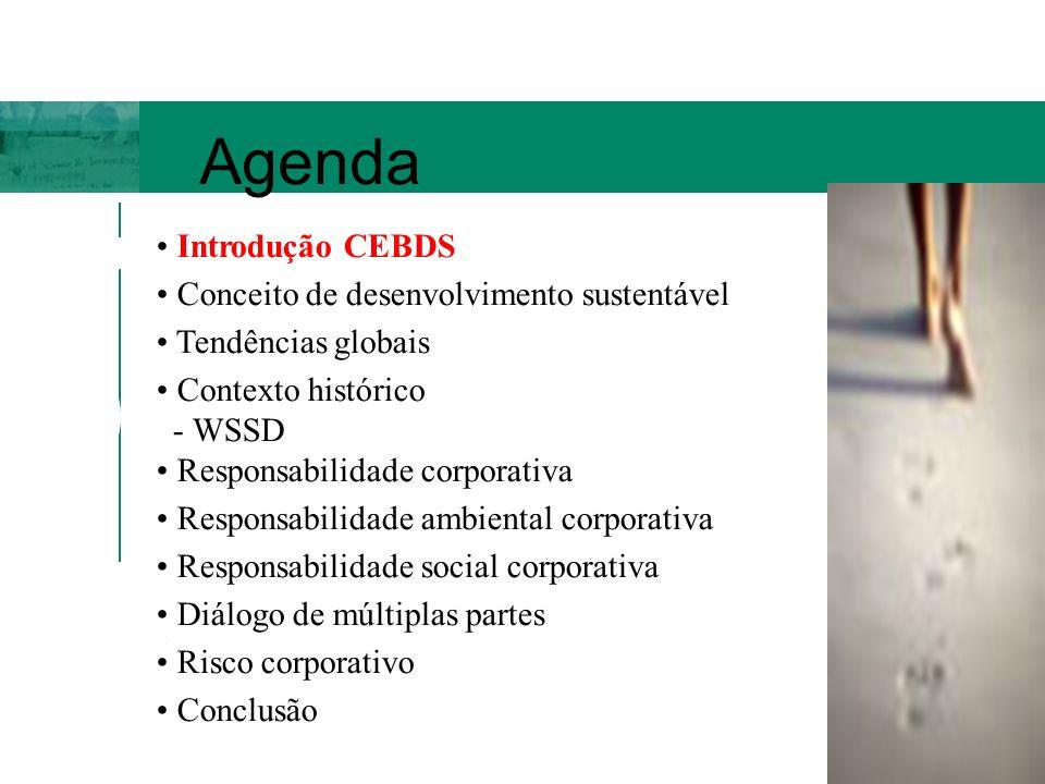 Criado em 1997, o CEBDS integra a rede de 50 Conselhos Nacionais vinculada ao World Business Council for Sustainable Development (173 grupos, com faturamento anual de US$ 6 trilhões e 2 bilhões de clientes/dia, gerando 11 milhões de empregos diretos).