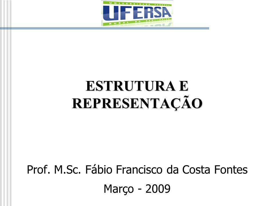 ESTRUTURA E REPRESENTAÇÃO Prof. M.Sc. Fábio Francisco da Costa Fontes Março - 2009