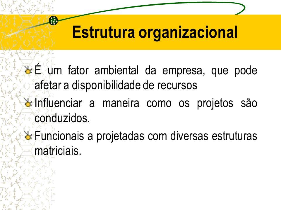 Estrutura organizacional É um fator ambiental da empresa, que pode afetar a disponibilidade de recursos Influenciar a maneira como os projetos são con