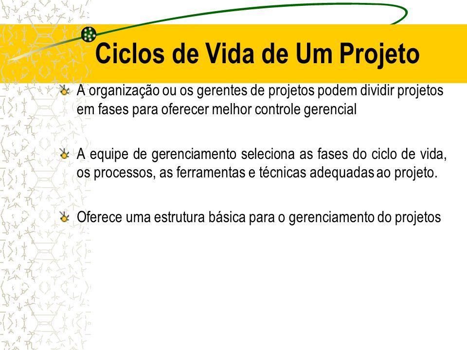 Ciclos de Vida de Um Projeto A organização ou os gerentes de projetos podem dividir projetos em fases para oferecer melhor controle gerencial A equipe