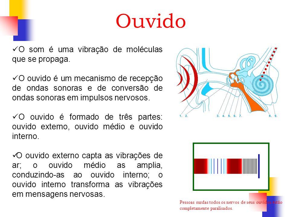 Ouvido O som é uma vibração de moléculas que se propaga. O ouvido é um mecanismo de recepção de ondas sonoras e de conversão de ondas sonoras em impul