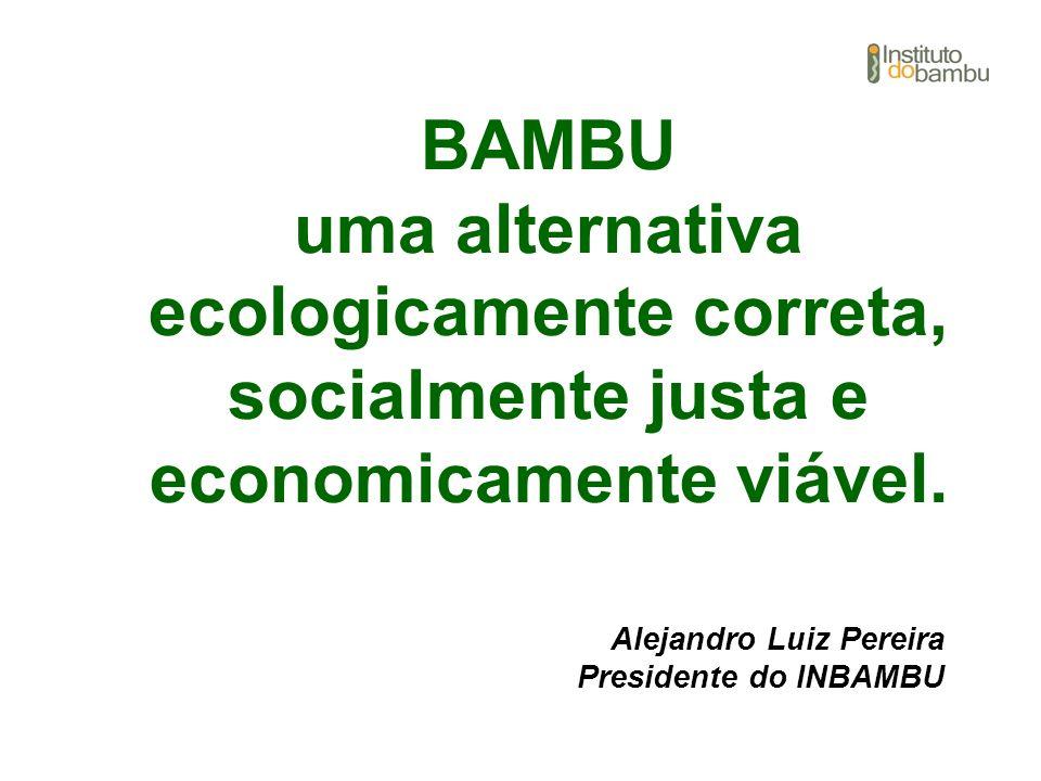 BAMBU uma alternativa ecologicamente correta, socialmente justa e economicamente viável. Alejandro Luiz Pereira Presidente do INBAMBU