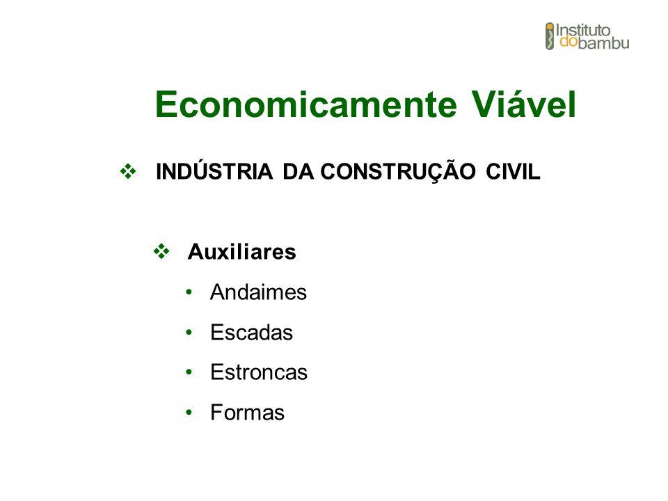 Economicamente Viável INDÚSTRIA DA CONSTRUÇÃO CIVIL Auxiliares Andaimes Escadas Estroncas Formas
