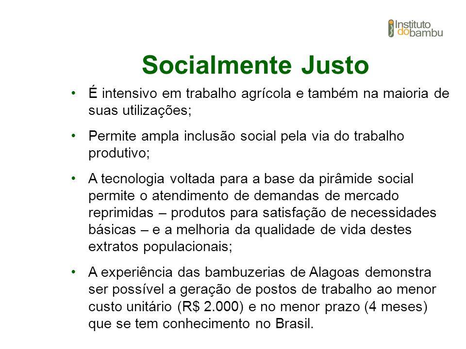 Socialmente Justo É intensivo em trabalho agrícola e também na maioria de suas utilizações; Permite ampla inclusão social pela via do trabalho produti